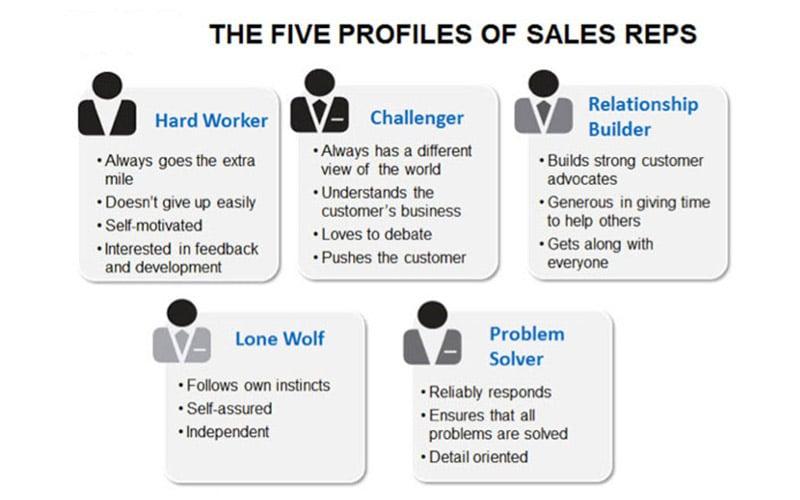 5 profile of sales reps